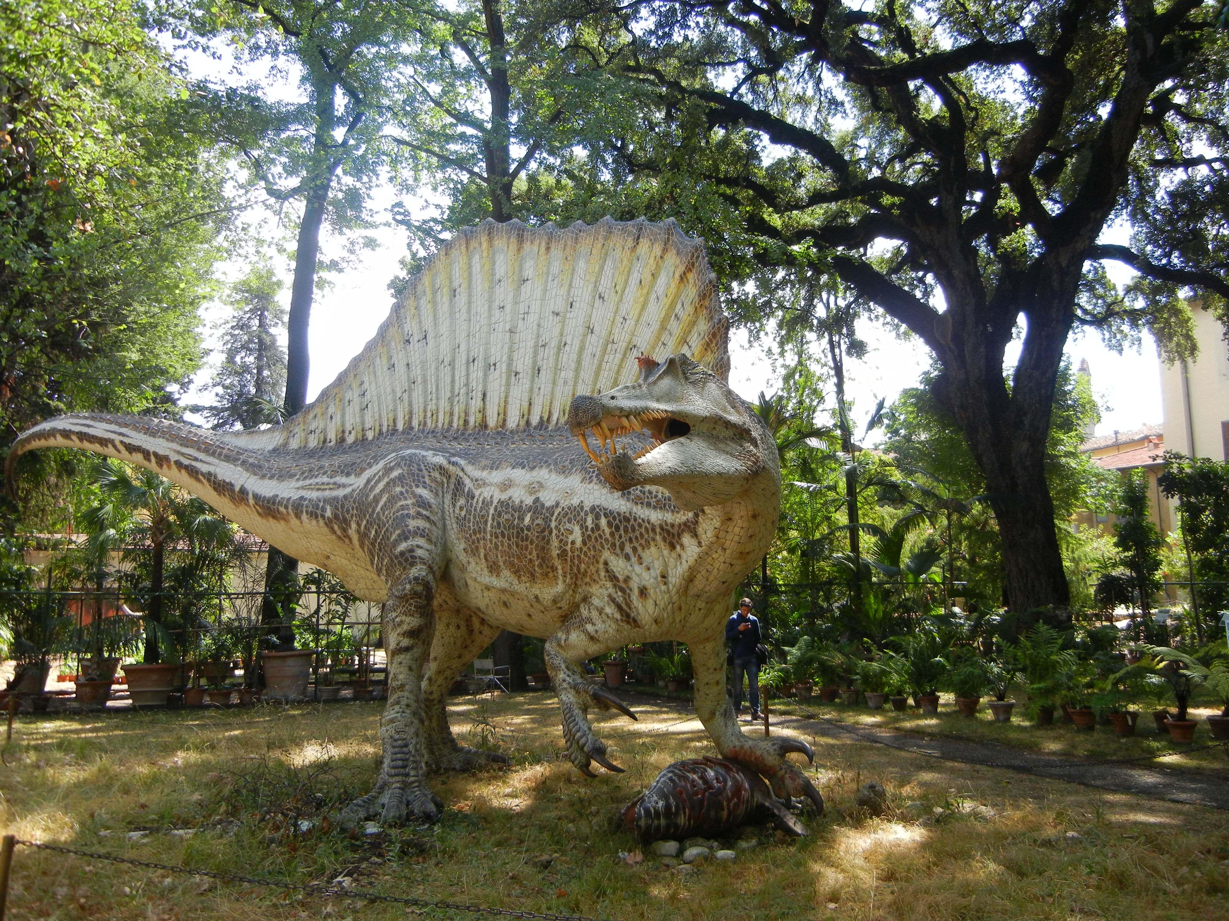 I Dinosauri Erano Inseriti Dentro Il Giardino Dei Semplici, Che è Anche  Lu0027Orto Botanico Di Firenze, Il Terzo Più Antico Al Mondo, Fondato Nella  Seconda Metà ...