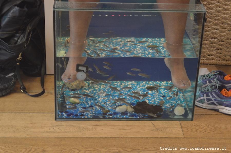 pedicure fish kiss firenze