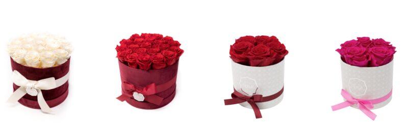 Rose stabilizzate idee regalo Natale