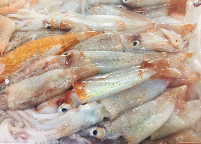pescheria a Firenze: calamari