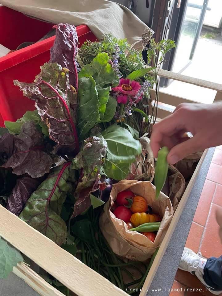 cesta di verdura km zero